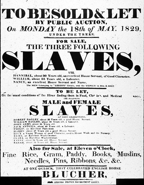 slavery and the power of a story heather pringle I'm Pregnant as