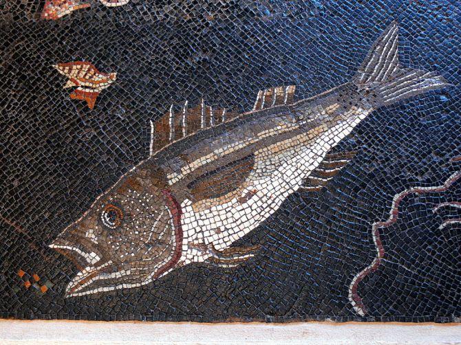 Römer_Mosaik_Fisch_2